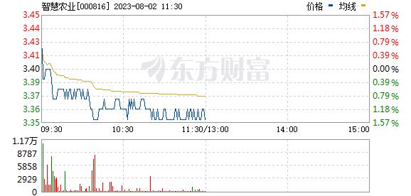 ST慧业(000816)