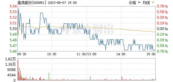 高鸿股份(000851)