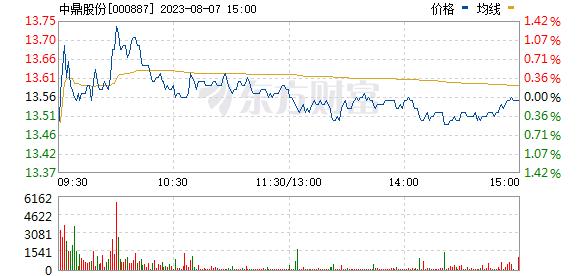 中鼎股份(000887)