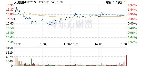 大港股份(002077)