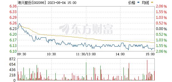 浔兴股份(002098)