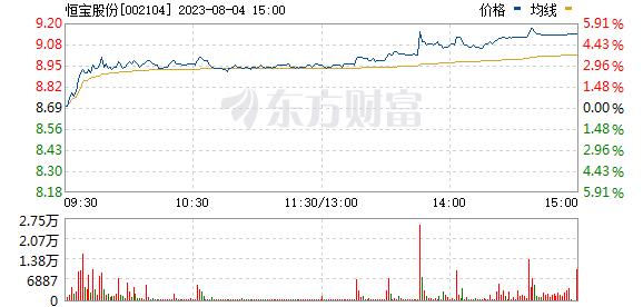 恒宝股份(002104)