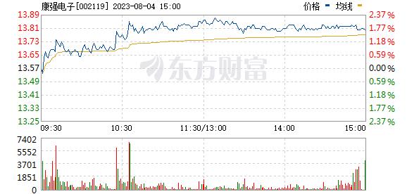 康强电子(002119)