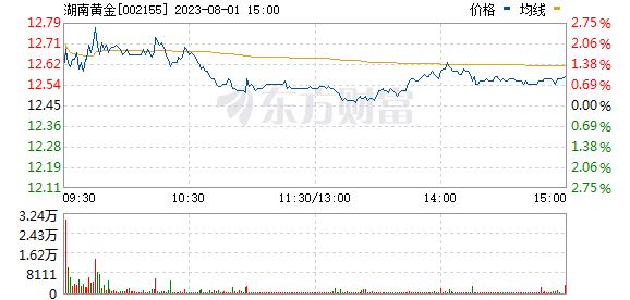 湖南黄金(002155)