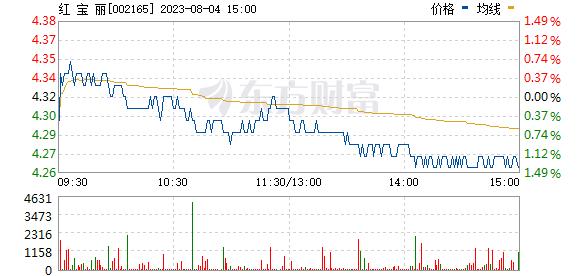 红宝丽(002165)