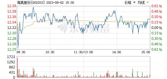 海亮股份(002203)