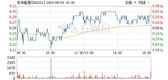 东华能源(002221)