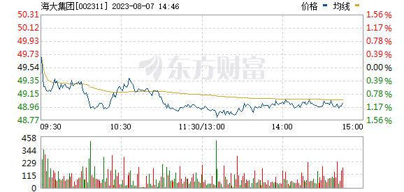 海大集团(002311)