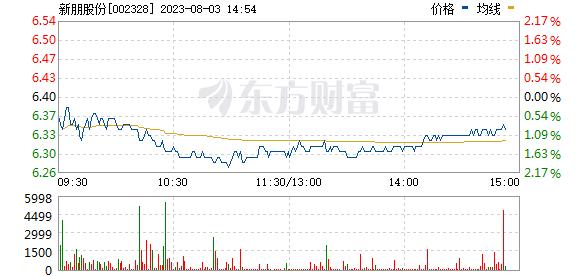 新朋股份(002328)
