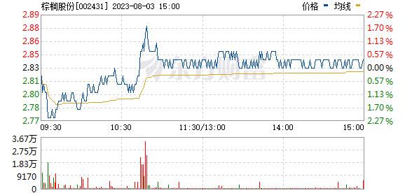 棕榈股份(002431)