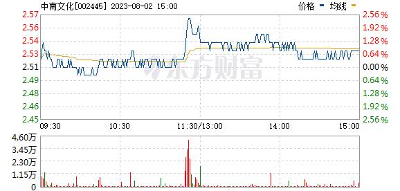 ST中南(002445)