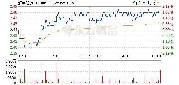 辉丰股份(002496)