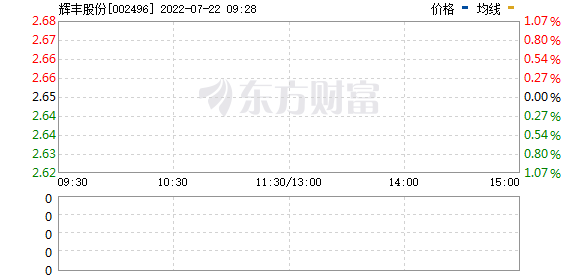 *ST辉丰(002496)