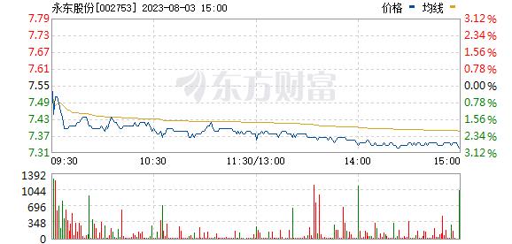 永东股份(002753)