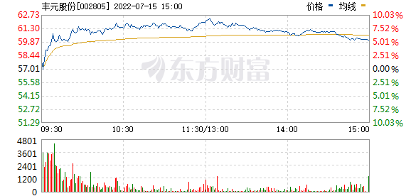 丰元股份(002805)