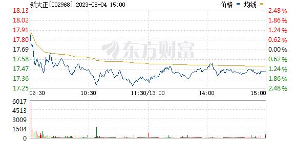 新大正(002968)