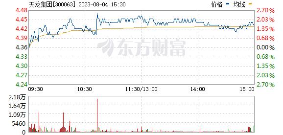 天龙集团(300063)