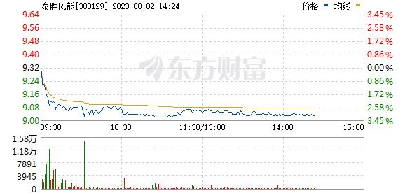 泰胜风能(300129)