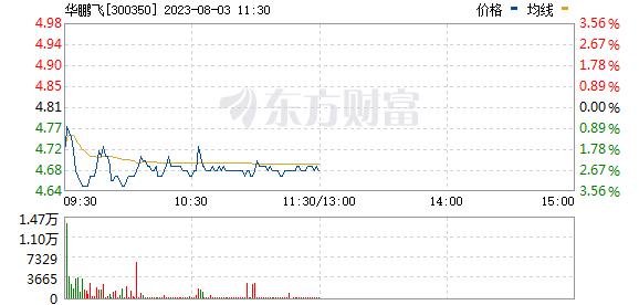 华鹏飞(300350)