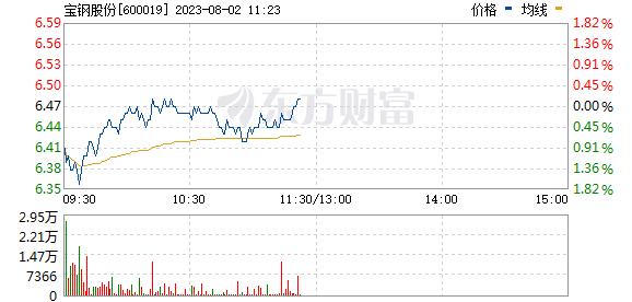 宝钢股份(600019)