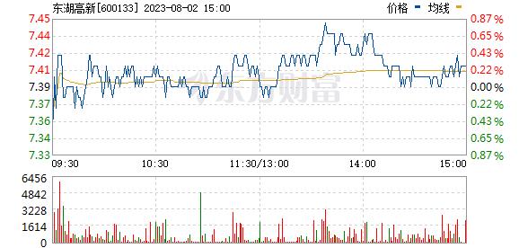 东湖高新(600133)
