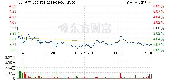 大龙地产(600159)