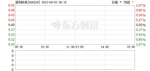 ST昌九(600228)