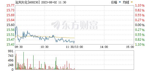 沧州大化(600230)