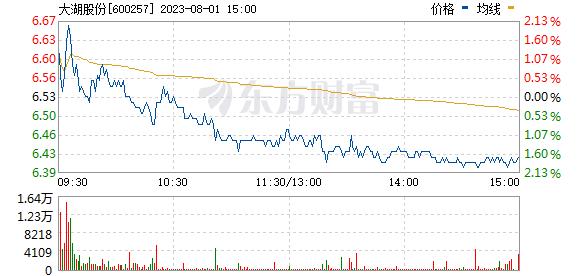 大湖股份(600257)
