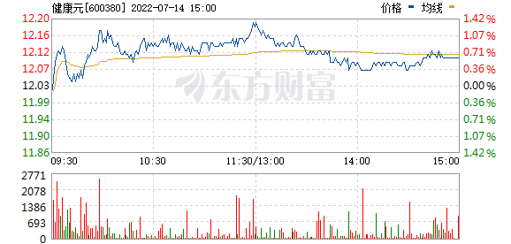 健康元(600380)
