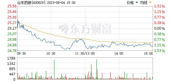 山东药玻(600529)