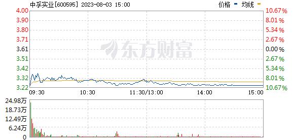 *ST中孚(600595)