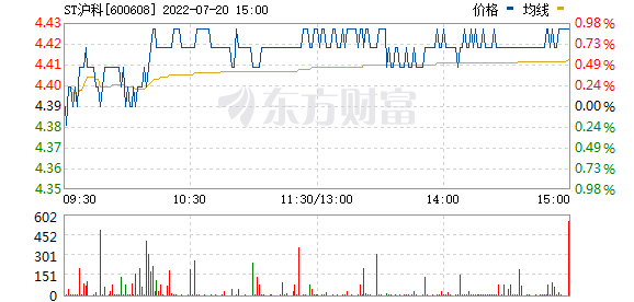 ST沪科(600608)