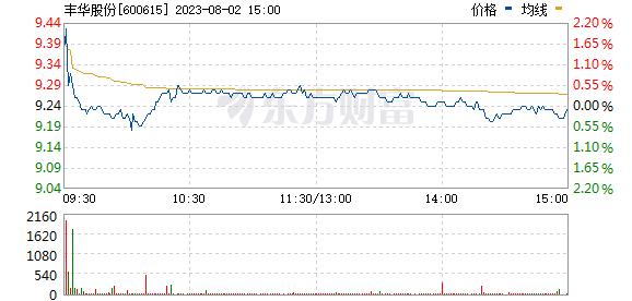 丰华股份(600615)