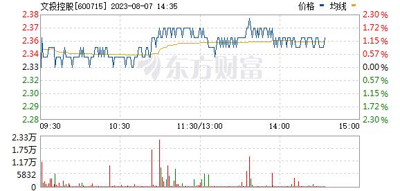 文投控股(600715)