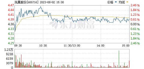 凤凰股份(600716)