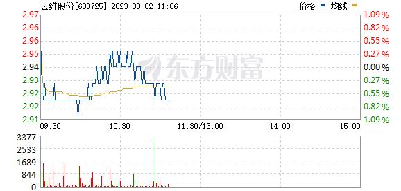 ST云维(600725)