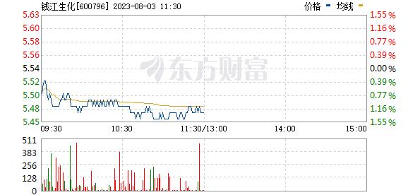 钱江生化(600796)