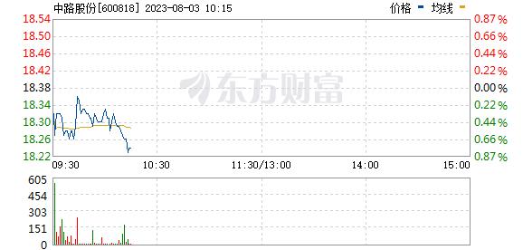 中路股份(600818)