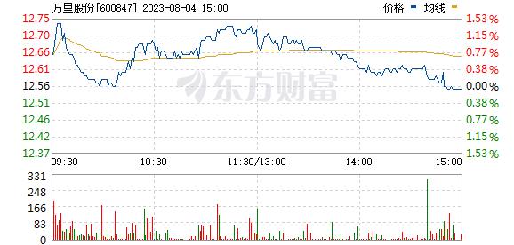 万里股份(600847)
