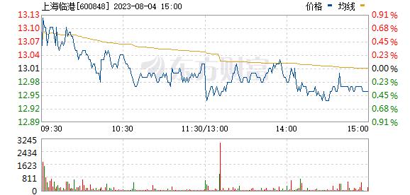上海临港(600848)