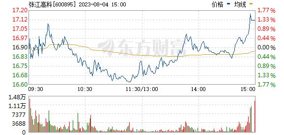 张江高科(600895)