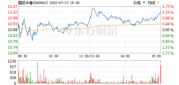 国投中鲁(600962)