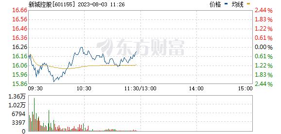 新城控股(601155)