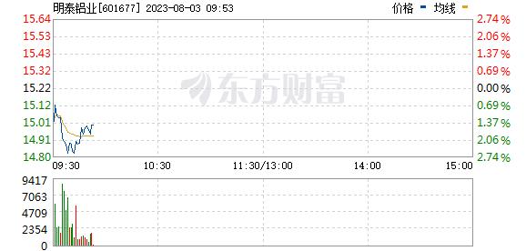明泰铝业(601677)