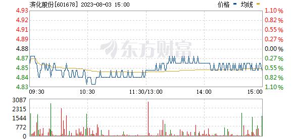 滨化股份(601678)