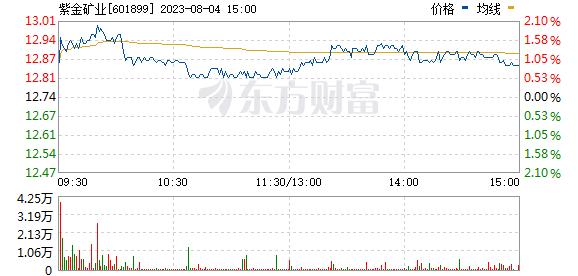 紫金矿业(601899)