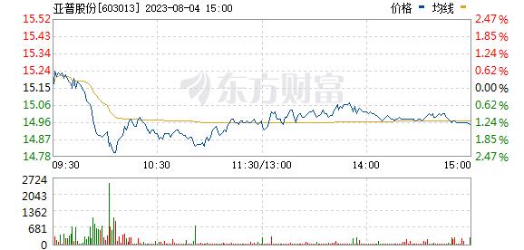 亚普股份(603013)