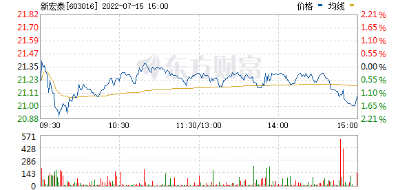 新宏泰(603016)