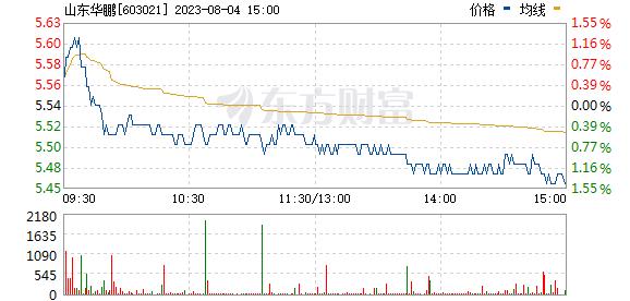 山东华鹏(603021)